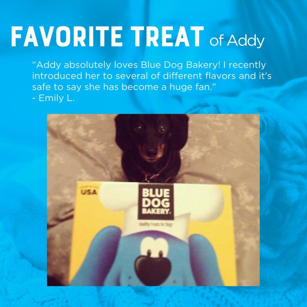 Blue Dog Bakery   Grain-Free Dog Biscuits   All-Natural   Peanut Butter & Molasses   16oz (Pack of 6) by Blue Dog Bakery (Image #5)