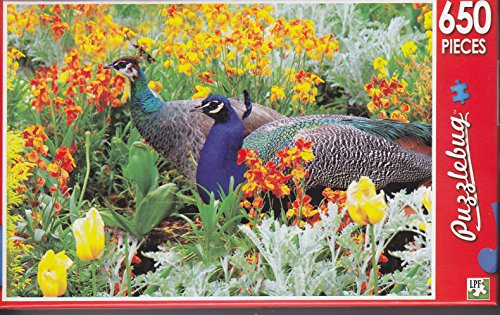 650 Piece Jigsaw Puzzle ~ Peacock in a Flowerbed