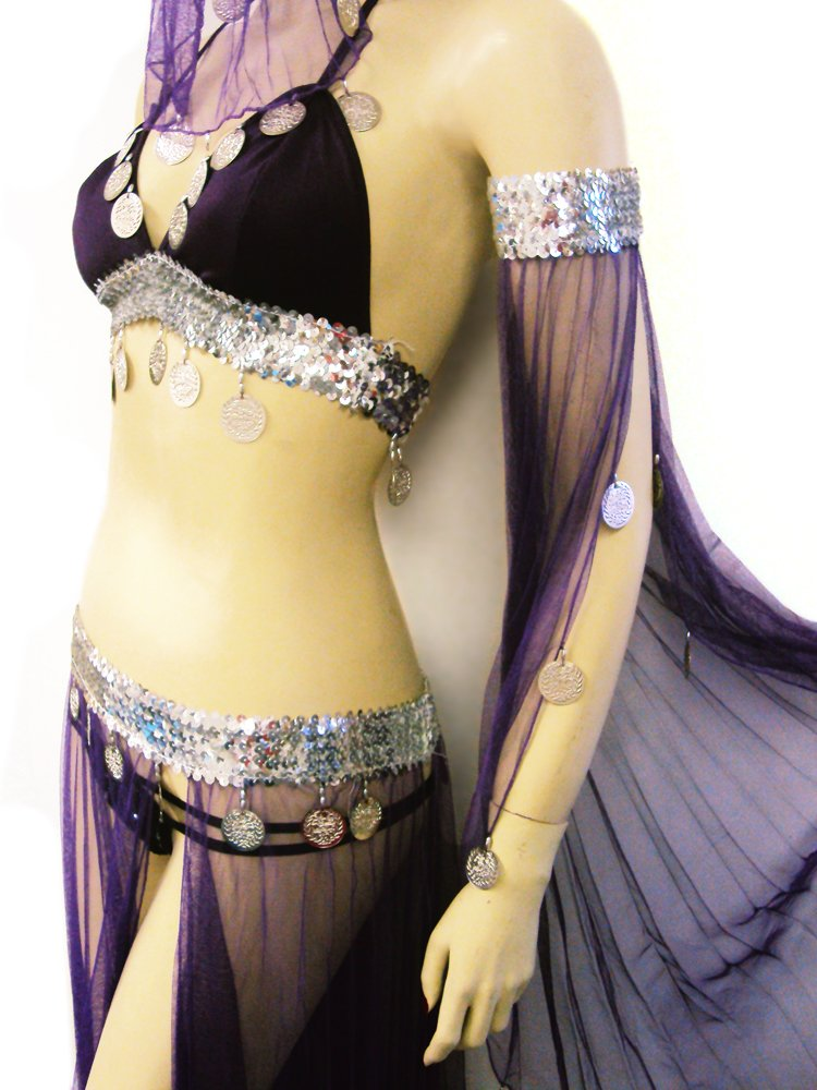 Sexy Halloween Harem Girl Belly Dance Dangling Coin Beaded Sheer 5-Piece Elastic Bra Top & Skirt, Armbands, and Veil Costume Set --Purple 32-36AB