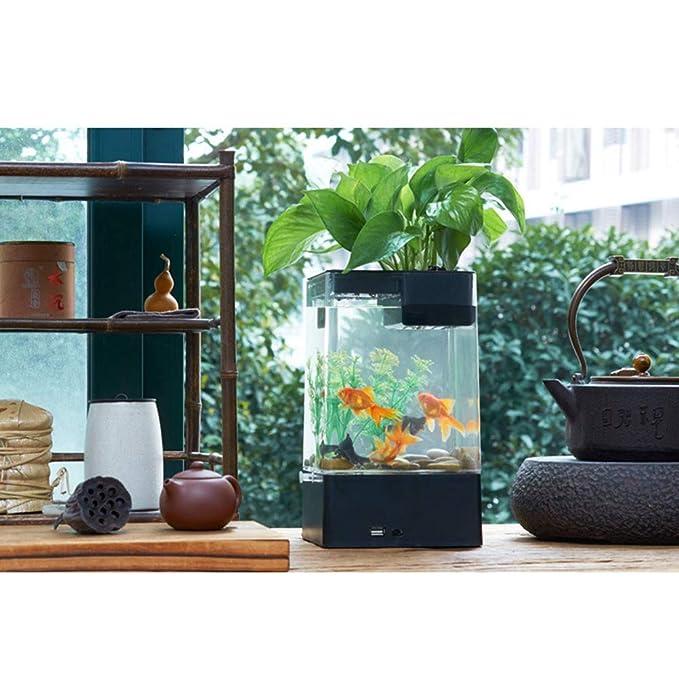 POPETPOP - Pecera para decoración de Escritorio de Oficina o casa, diseño de pecera, Color Negro: Amazon.es: Productos para mascotas