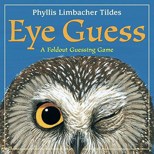 Eye Guess: A Foldout Guessing Game