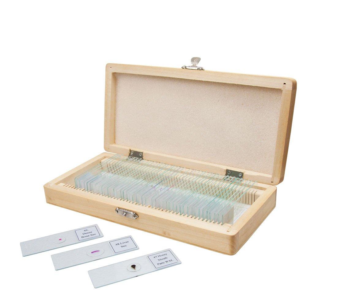 Celestron Pre-Prepared Specimen Slides for Microscopes 822487