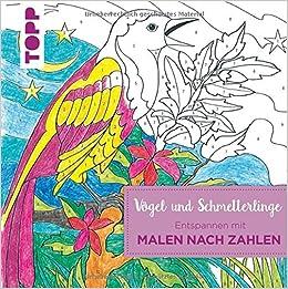 Entspannen Mit Malen Nach Zahlen Vögel Und Schmetterlinge Amazon