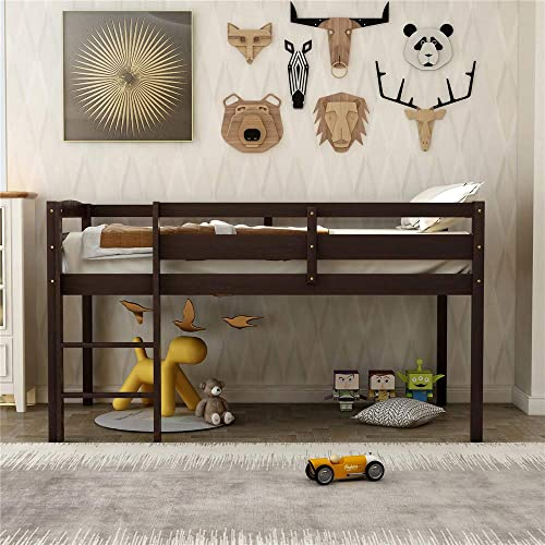 Solid Wood Twin Size Low Loft Bed