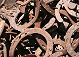 30PCS AUTHENTIC CERTIFIED HORSESHOE USED RUSTIC PREWORN CRAFT HORSE SHOE GOOD LUCK