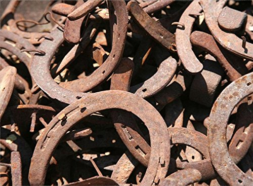 30PCS AUTHENTIC CERTIFIED HORSESHOE USED RUSTIC PREWORN CRAFT HORSE SHOE GOOD LUCK by DivineTM