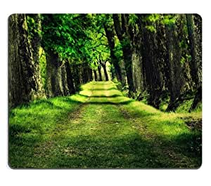 Green Grass Forest Path Scenery Mouse Pads Customized Made to Order Support Ready 9 7/8 Inch (250mm) X 7 7/8 Inch (200mm) X 1/16 Inch (2mm) High Quality Eco Friendly Cloth with Neoprene Rubber Luxlady Mouse Pad Desktop Mousepad Laptop Mousepads Comfortable Computer Mouse Mat Cute Gaming Mouse pad