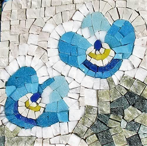 Amazon Com Forget Me Not Flower Mosaic Craft Kit For