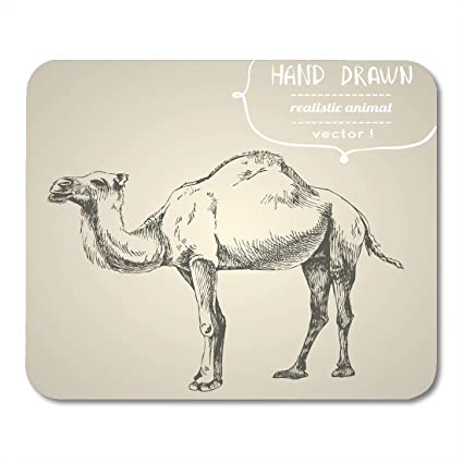Amazon Com Boszina Mouse Pads Vintage Draw Camel Separately From