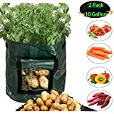 Grow Bags 2 Pack 10 Gallon Garden Potato Grow Bags Breathable growing bags with Flap and Handles Waterproof Vegetable planting Planter Bag Fabric plant Pot for Onion, Potato, Flower, Carrot, Tomato