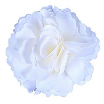 Amazon anleolife fabric beach florida flower hair clips anleolife fabric beach florida flower hair clips wedding favorsspring barrette corsage flower clip 6pcs mightylinksfo