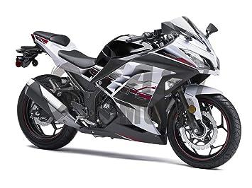 Amazon.com: 9FastMoto Motorcycle Decals Sticker for kawasaki ...