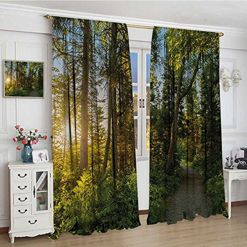 youpinnong Landscape Waterproof Curtain National Park in Cape Breton Highlands Canada Forest Path Trees Tranquility Photo Lengthened Blackout Draperies for Bedroom 72
