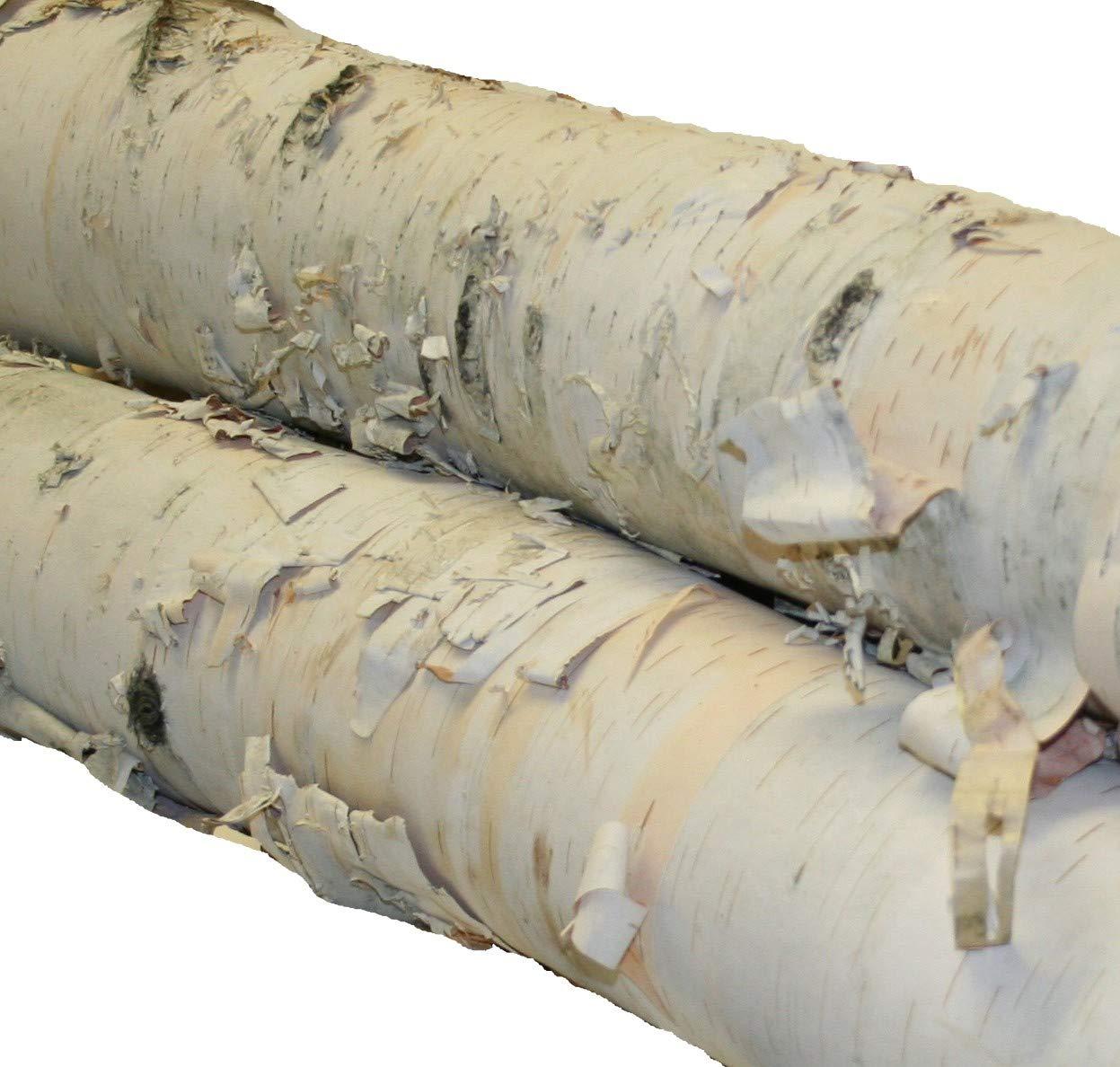 Fireplace Set of White Birch Logs by Wilson Enterprises