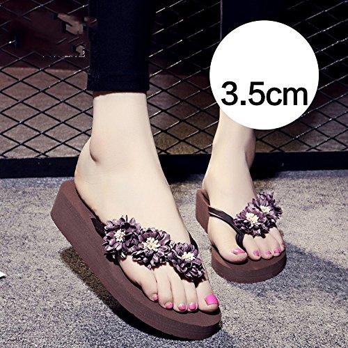 Pantofole 3 azzurro marrone estive 5cm femminili Brown donne HAIZHEN Per rosa femminili le blu antisdrucciolo femminili scuro scarpe donna da rrw7Tp