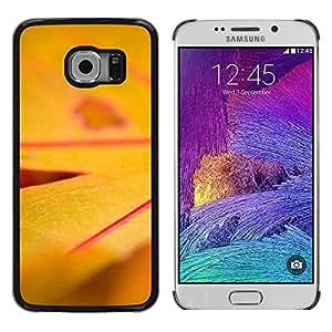 Be Good Phone Accessory // Dura Cáscara cubierta Protectora Caso Carcasa Funda de Protección para Samsung Galaxy S6 EDGE SM-G925 // Plant Nature Forrest Flower 17