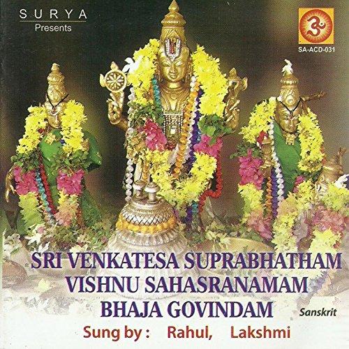 Sri Vishnu Sahasranamam In Telugu Mp3 Free Download By Ms Subbulakshmi