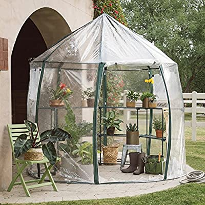 Outdoor Greenhouse with Shelves Made of Transparent PVC and Steel in Green Color