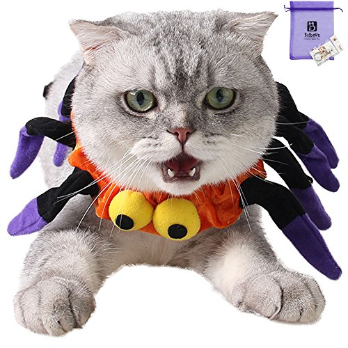 Bolbove Adjustable Spider Halloween Pet Neck Wear for Cats & Small Dogs Party Costume Free (Spider Cat Costumes)