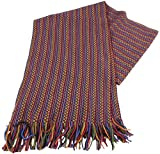 Bassin and Brown Mens Bates Birdseye Scarf - Red/Gold