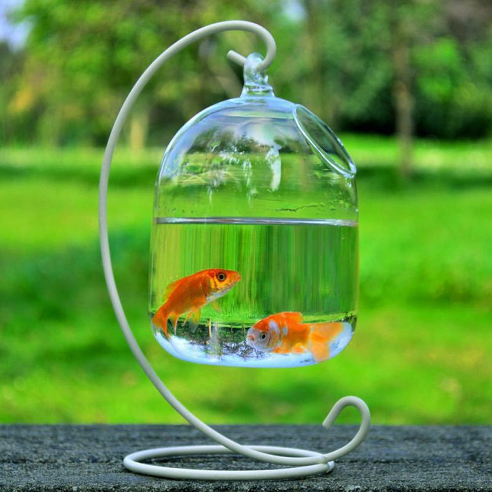CosCosX Original Bell Shaped Hanging Glass Aquarium Fish Pot/Vase/Tank/Bowl(White)