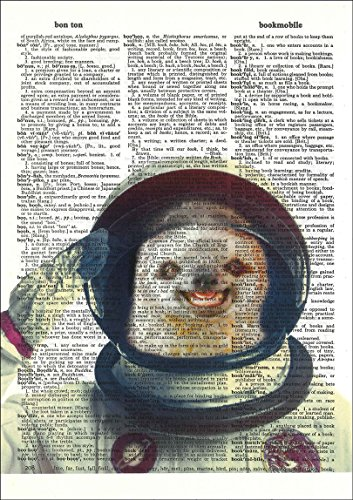 Fresh Prints Of Ct Sloth Astronaut - Dictionary Art Print Printed On Authentic Vintage Dictionary Book Page - 8 X 10.5 -