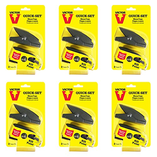 Victor Quick-Set Mouse Trap - 6 Pack (12 Traps) M137 - One touch set ()