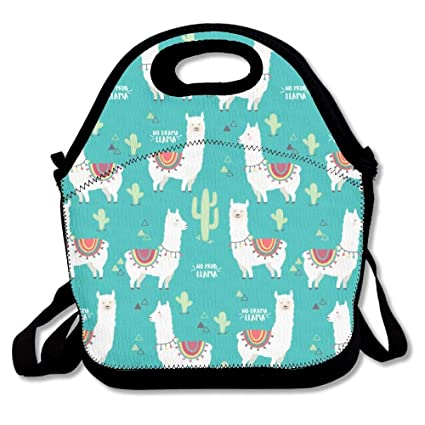 488a1d06c46e Custom Lunch Bag for Women Insulated Customizable Your Picture Lunch Tote  for Girls Personalized Gifts for Kids for Outdoor Picnic or Work - No ...