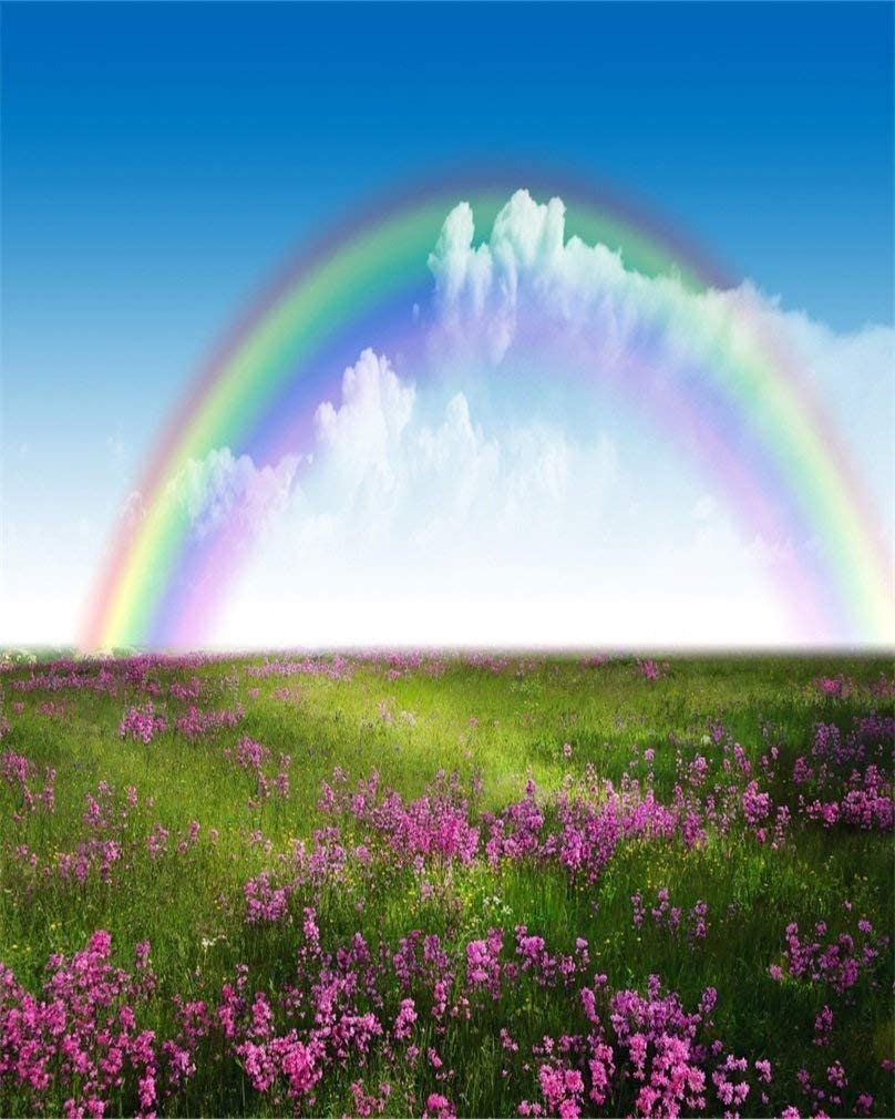 8x10ft Spring Meadow Photography Studio Backdrop Rainbow Flowers Background Blue Sky Baby Kid Lovers Girl Adult Artistic Portrait Wedding Nature Scenic Photoshoot Props Video Drape Wallpaper