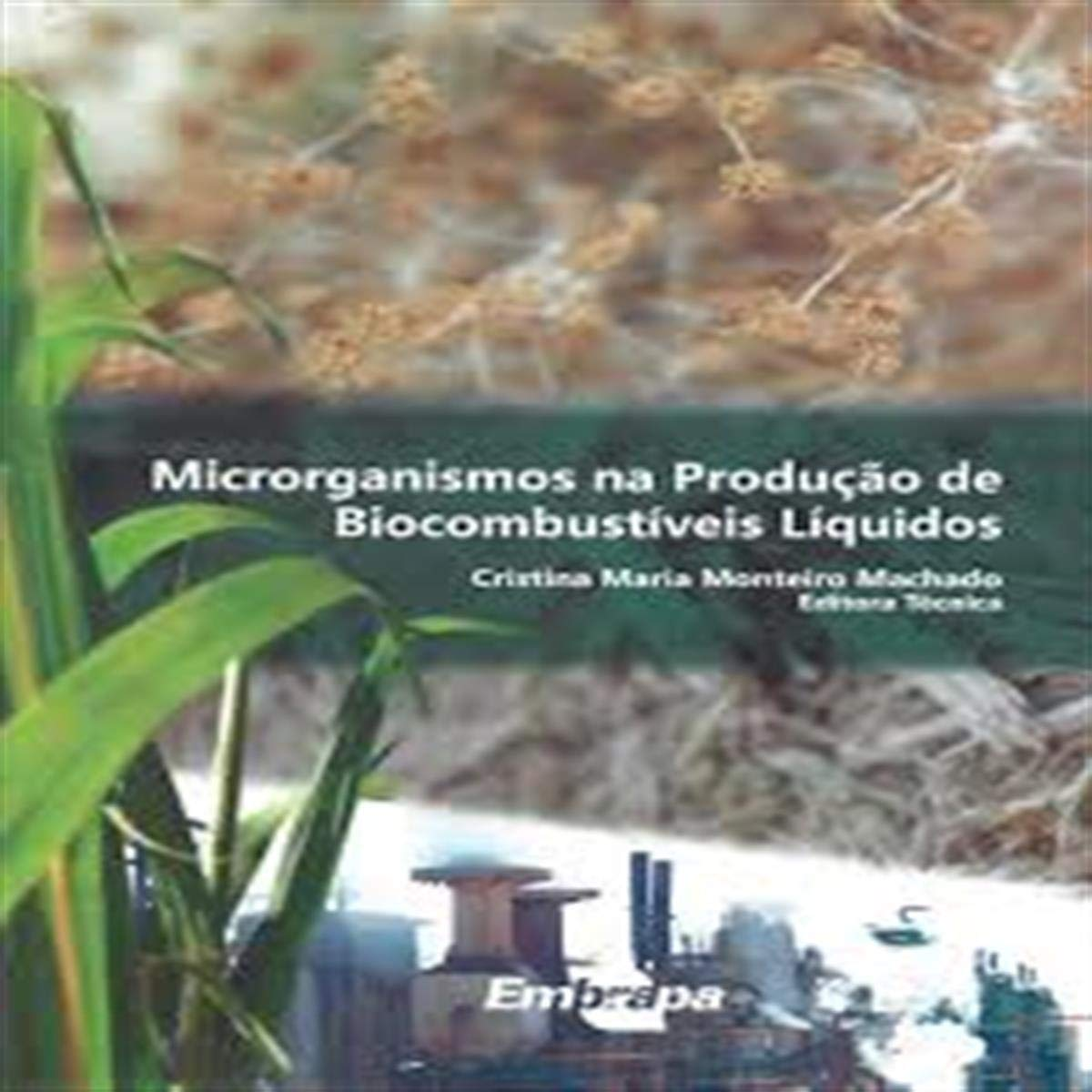 Microorganismos na Producao de Biocombustiveis Liquidos ...