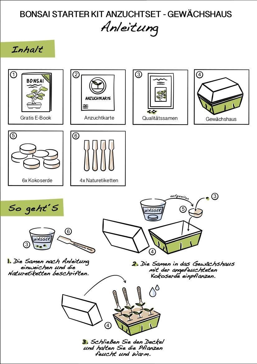 GRATIS eBook /& Mini-Gewächshaus I HappySeed Bonsai Starter Kit Anzuchtset inkl