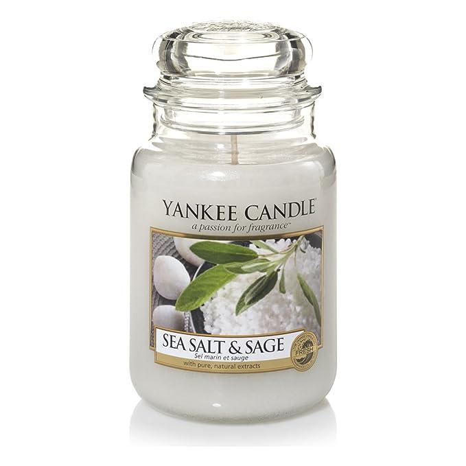 104 opinioni per Yankee Candle Sea Salt & Sage Candele in Giara Grande, Vetro, Bianco,