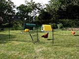 Omlet Chicken Fencing - 12m - Green - Inc Gate, Double Spike Split Poles and Guy Lines