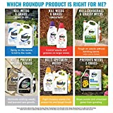 Roundup 5705010 Extended Control Weed and Grass