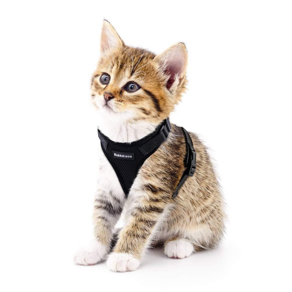 rabbitgoo Cat Harness for Walking, Escape Proof for Small Medium Cats, Adjustable Vest Harnesses, Small Cats Soft Mesh…