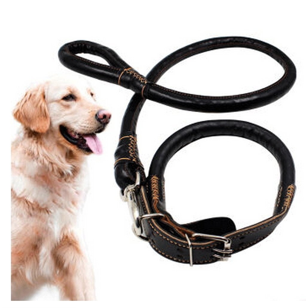 1 Large  1 Large Pet Dog Leash Pet Leash, Walking Dog Leash, Dog Leash, Large Dog, Dog Leash Large, Medium and Small Dogs Training, Walking, jo (color    1, Size   L)