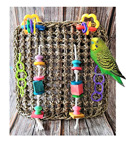 GoodsBeauty 12x12inch Hanging Foraging Wall Bird Toys - Handmade Sea Grass Climbing Net Ladder for Bird Exercise IQ Simulation Cage Decor for Parrots