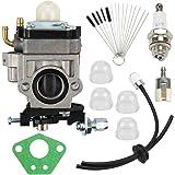 Amazon.com: HIPA Carburador + foco de imprimación línea de ...