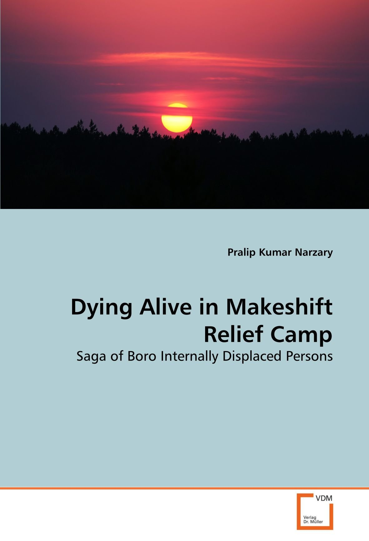 Dying Alive in Makeshift Relief Camp: Saga of Boro Internally Displaced Persons ebook