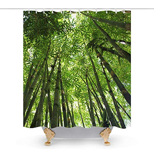 Green Bamboo in The Forest Zen Theme Fabric Shower Curtain Sets Bathroom Decor with Hooks Waterproof Washable 72 x 72 inches Green White (All Quiet On The Western Front Nature)