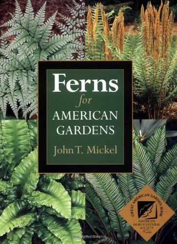 Ferns for American Gardens
