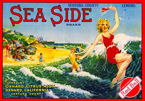 - A SLICE IN TIME Oxnard, Ventura County Sea Side Girl in the Ocean Lemon Citrus Fruit Crate Box Label Art Print