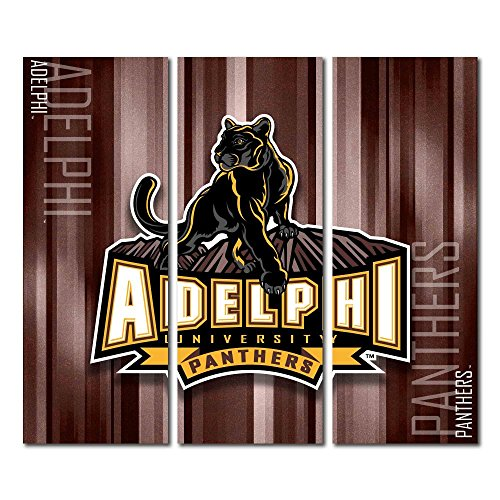 Adelphi University Panthers Triptych Canvas Wall Art Rush (48x54 inches)
