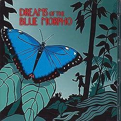 Dreams of the Blue Morpho