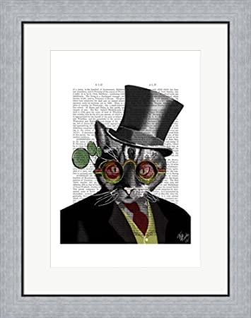 Amazon Steampunk Cat Top Hat And Red Yellow Glasses By Fab