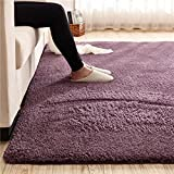 Super Soft Gary Purple Area Rug Kids Rugs Artic Velvet Mat with Plush and Fluff for Bedroom Floor Bathroom Pets Home Hotel Mat Rug (2' x 3', Gary Purple)