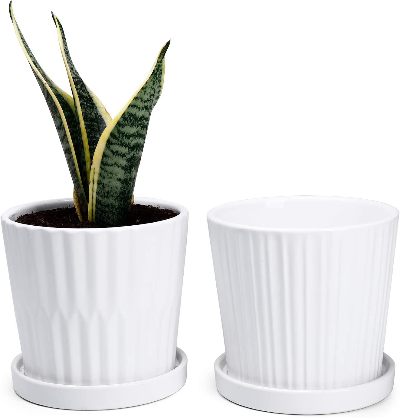 Medium Plant Pots - 6 Inch White Cylinder Ceramic Planters with Attached Saucers, Two Line Grain, House and Office Decor, Set of 2