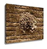 Ashley Canvas Stone Crop Succulent Plants Growing On Old Stone Wall In Backyard Garden, Kitchen Bedroom Living Room Art, Sepia 24x30, AG6503749