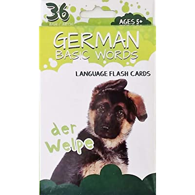 Educational Flash Cards - Learn Language German Basic Words (School Homeschool Practice - Fun!): Toys & Games