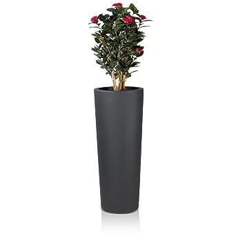 Pflanzkübel Blumenkübel CONO 110 Kunststoff, 45x45x110 cm, anthrazit ...